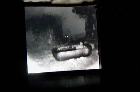 """חזיר בר ושוקת, 2017, צילום דיגיטאלי דרך מכשיר לראיית לילה, 60x40 ס""""מ"""